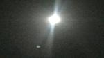 IMG_7263-zoomx8